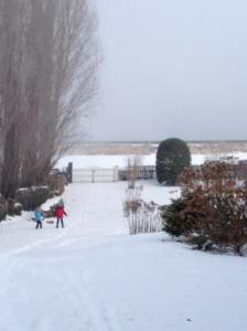 Vieux-Port Garden, Winter