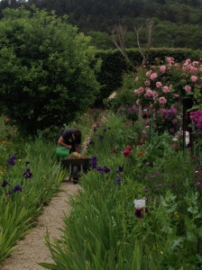 Gardener, Giverny