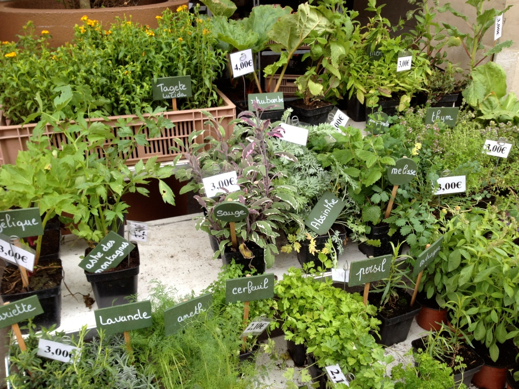 Herbs, Normandy market day