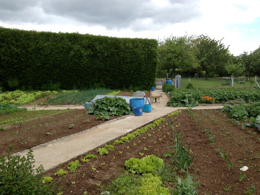 Vegetable garden, Normandy
